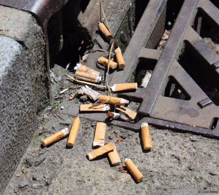 mégots de cigarettes dans la rue